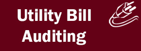 Utility Bill Auditing